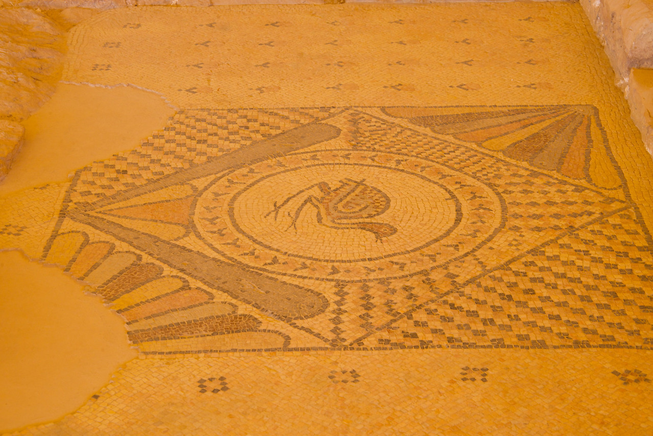 Bird Medallion in Mosaic Floor