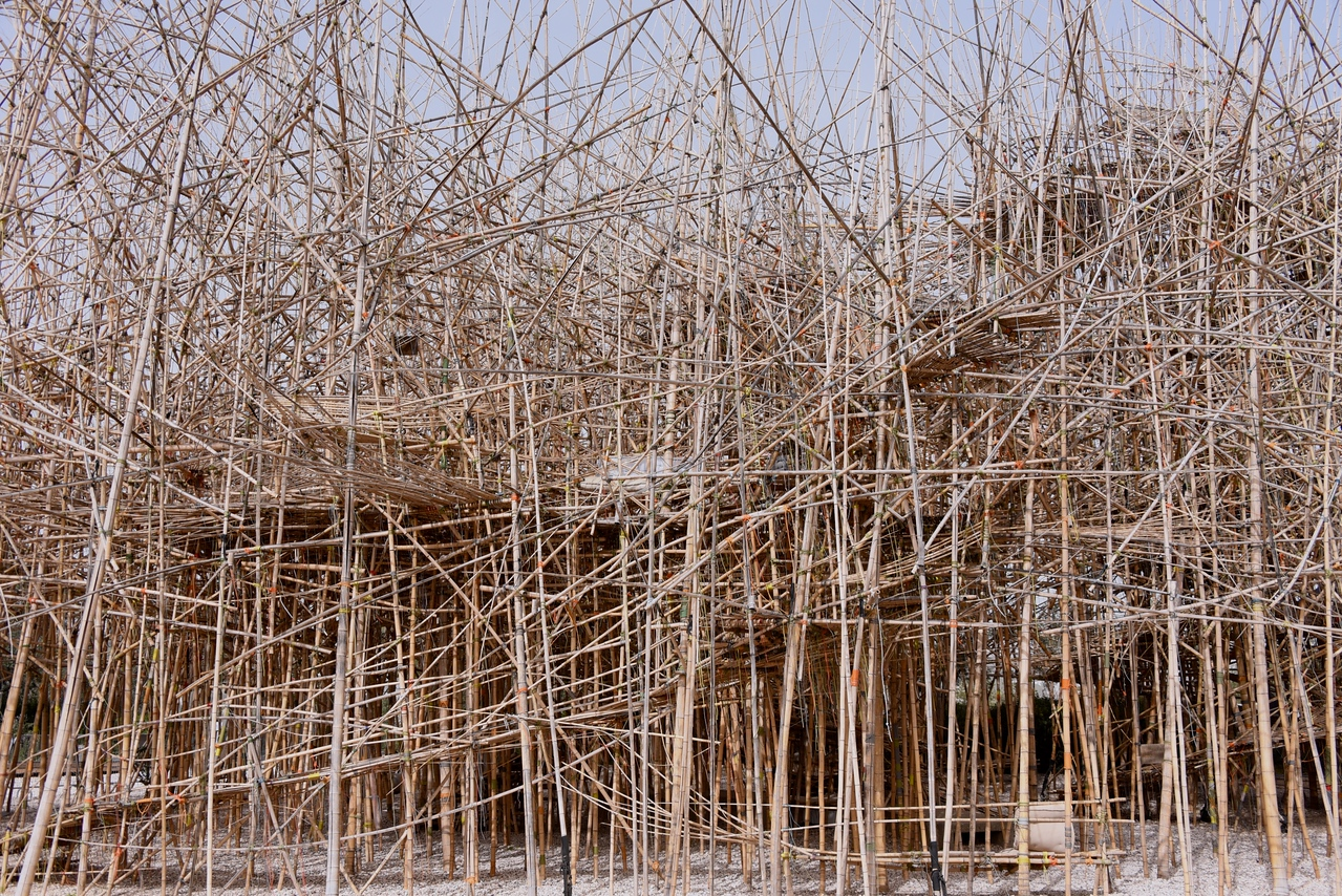Big Bambú is a Work of Installation Art by Identical Twin Artists Doug and Mike Starn