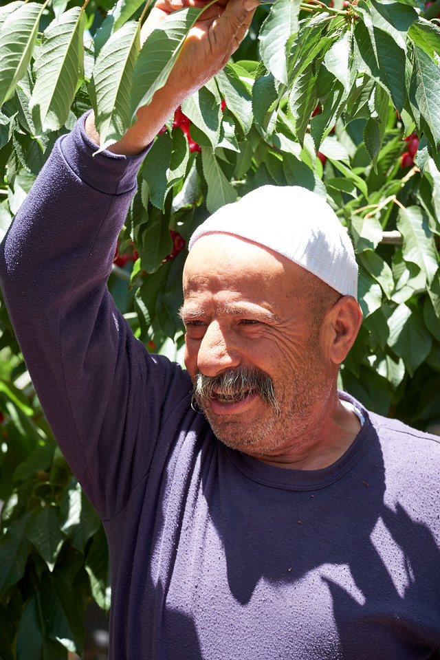 The proud Druze cherry farmer.