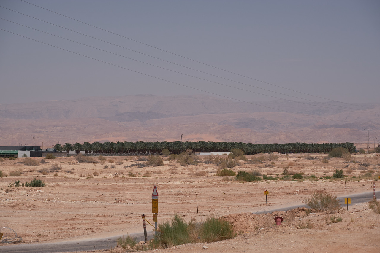 Through a land swap with Jordan, Israel is able to grown dates across the Jordan border.