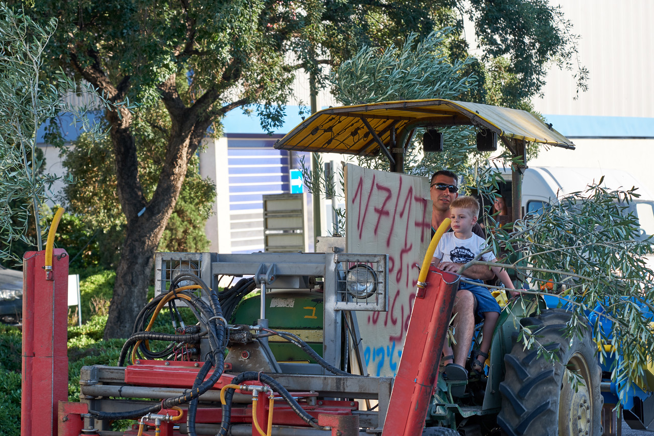 Tractor parade begins. This Each tractor represents Kibbutz Shamir enterprise. This one honors the olive groves.