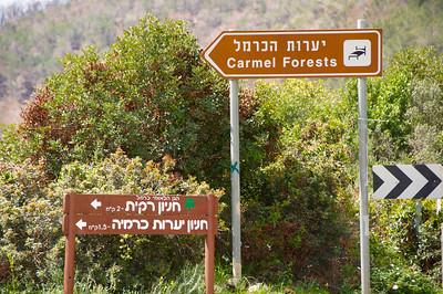 Israel Spring 2011