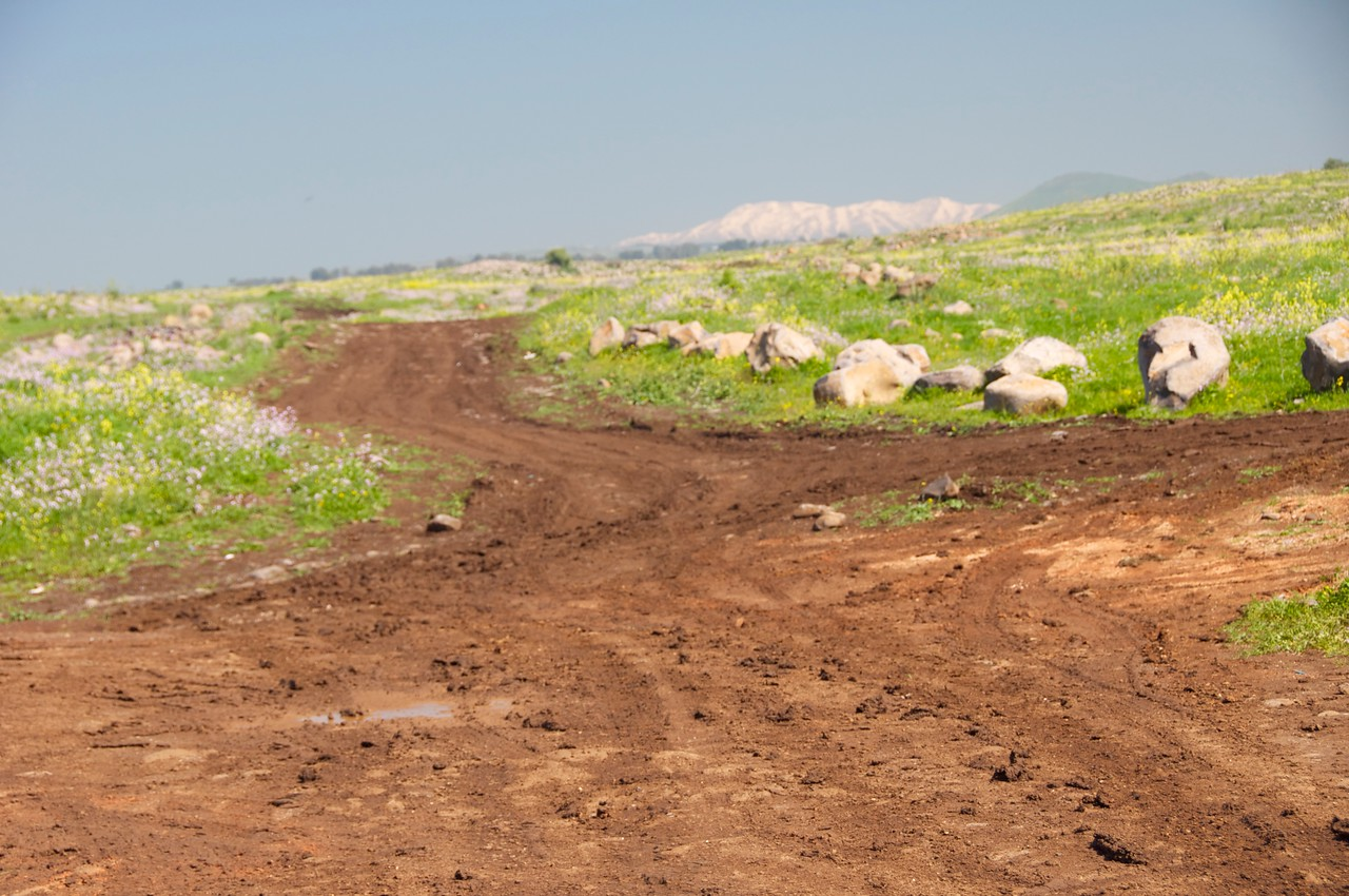 Dirt Roads Where Army Manuevers Are Practiced on Golan Heights