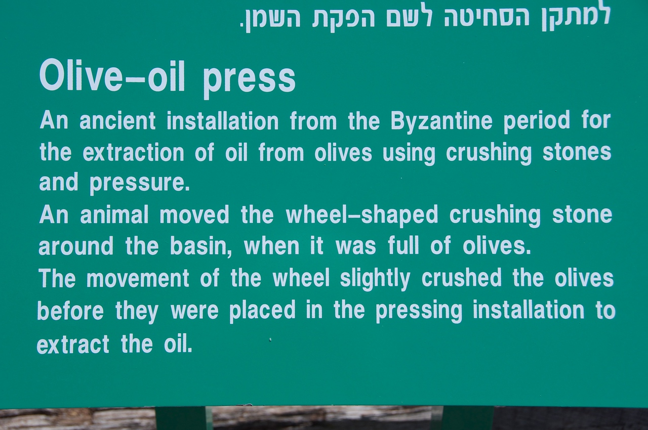 Explaination of Olive Oil Press