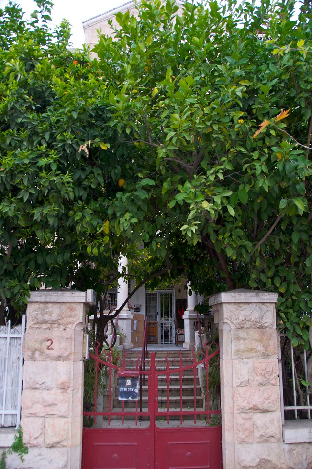 Fruit Trees in Front of House in  Komemiyut, Hebrew Name for Neighborhood Known as Talbiya
