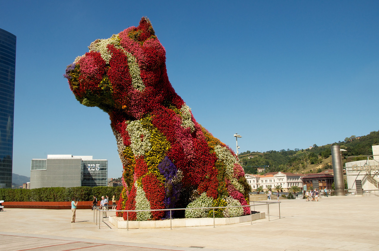 """Puppy"" Changes Colors With The Seasons Depending on The Plants"