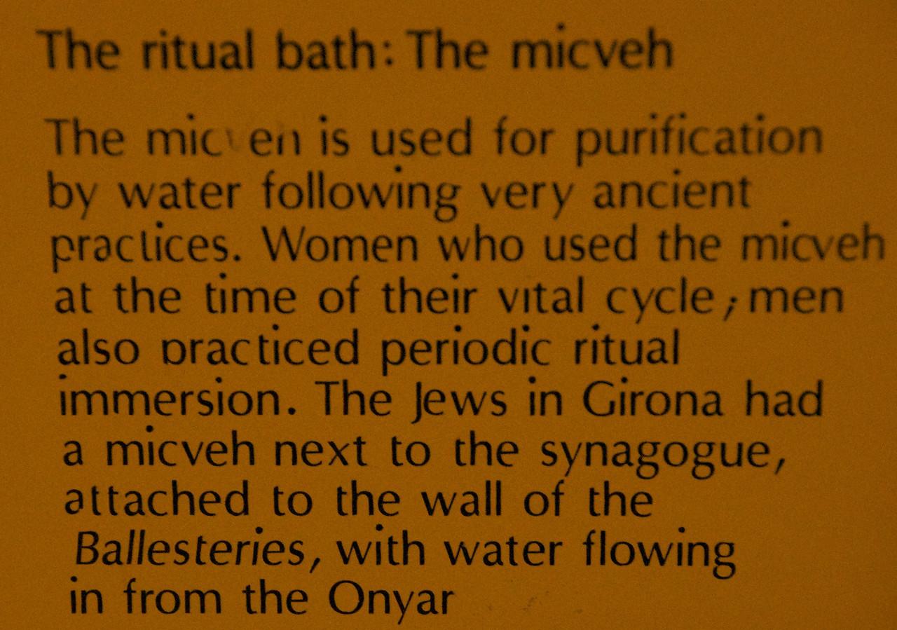 The Micveh