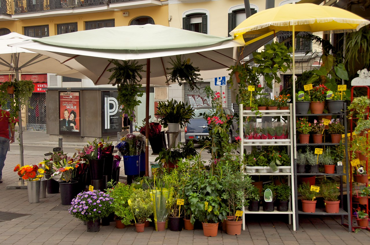 Flower Shop on Small Plaza