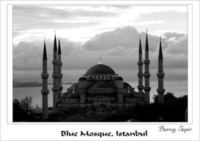Blue_Mosquepsd_edited-1
