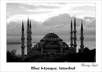 Blue_Mosquepsd