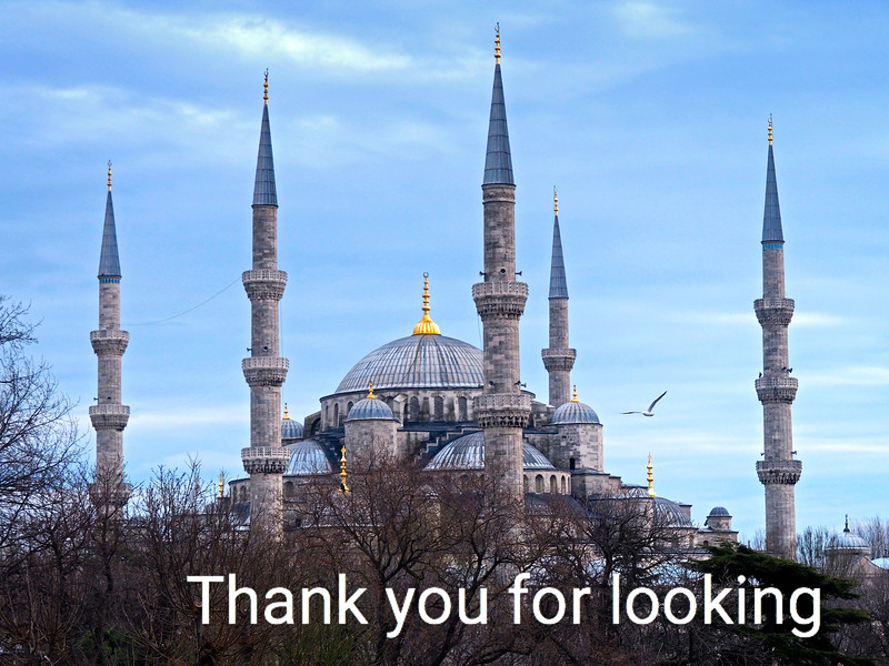 Blue Mosque in the evening.jpg