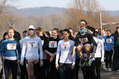 2013-3 Run2Erg
