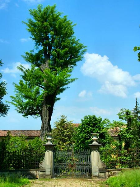Jardins do Palácio Pitti