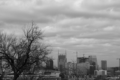 It was a gray day in Nashville, and I was in a gray mood 1/26/17