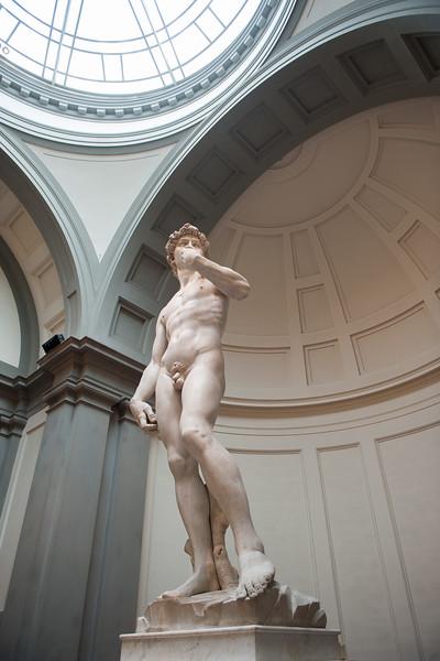 Michelangelo's David in Galleria dell' Accademia