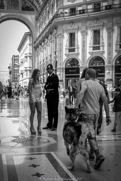 Galleria Vittorio Emanuelle ii ; Milan