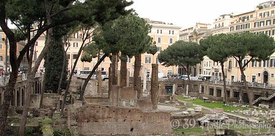Largo di Torre Argentina  - this is where Julius Caesar was stabbed to death by Brutus (et tu, Brute?) in 44 BC. It now serves as a sanctuary to about 250 of Rome's thousands of feral cats.