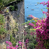 Positano - walk down to Fornillo Beach