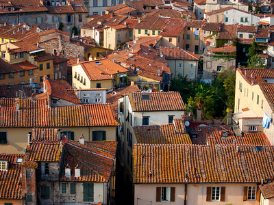 Lucca, view from the top of the Guinigi Tower