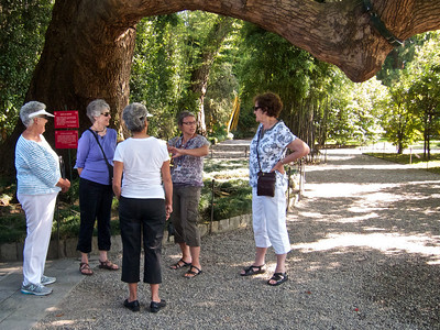 Near Stresa, Isola Bella Gardens on Lake Maggiore