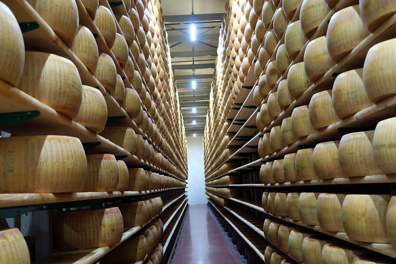 An incredible collection of Parmigiano Reggiano wheels at Hombre farm