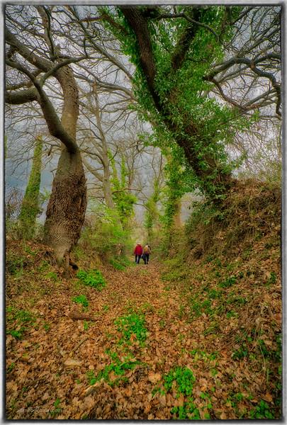 Hiking Near Cretaiole