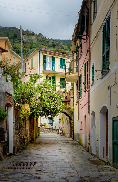 Old Town Monterosso
