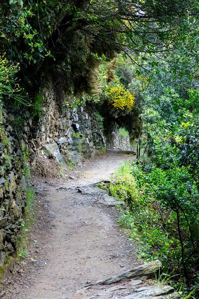 Monterosso to Vernazza Path