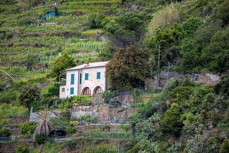 Monterossa to Vernazza Path