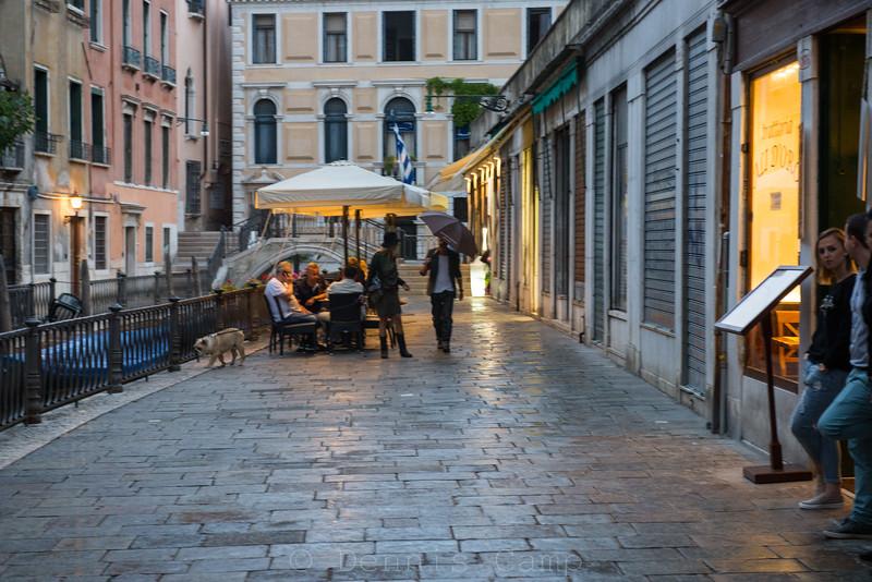 Venezia Umbrellas