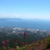 Top of Mt. Vesuvius toward Capri