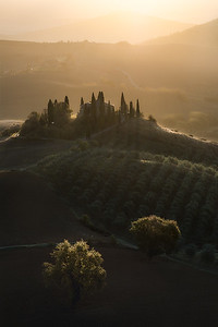 Golden light during sunrise in Val D'orcia - Tuscany