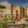 Via Torre Argentina Ruins, Rome