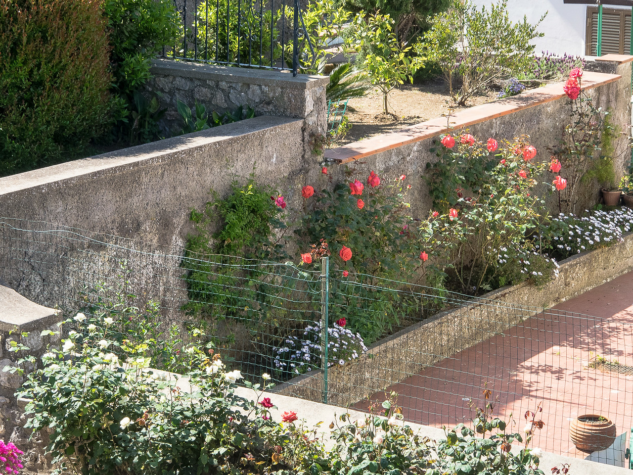 Capri - Garden from the Monte Solara lift
