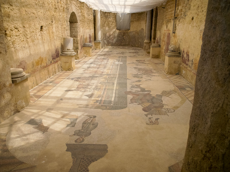 Circus room with original mosaic of a chariot race at the Circus Maximus and walls.  Colums were excavated for churches.