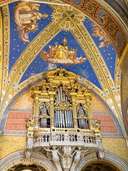 Santa Maria Sopre Minerva - Organ pipes