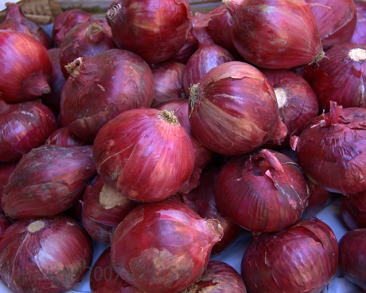 Red Onions, Bologna, Italy