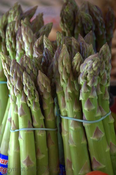 Asparagus - Firenze, Italy