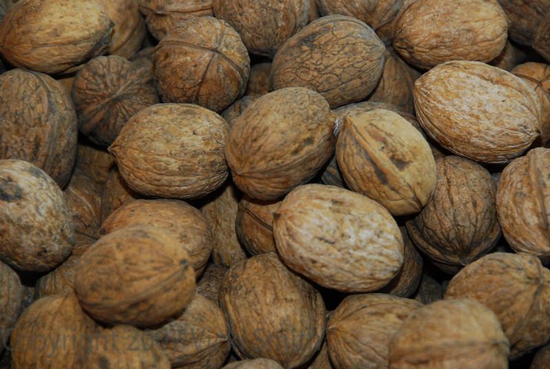 Walnuts - Bologna, Italy