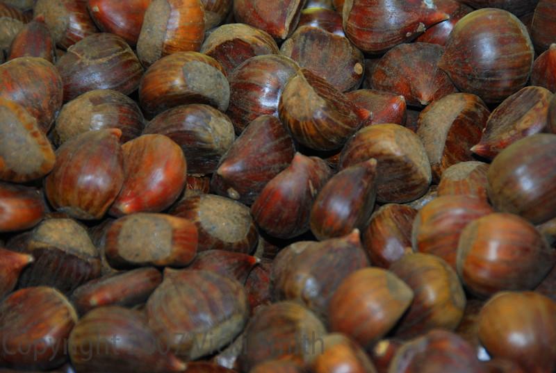 Chestnuts - Bologna Italy