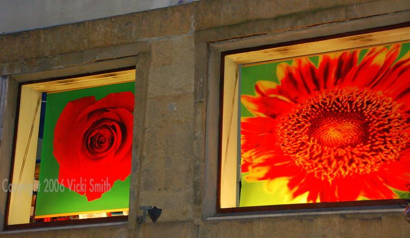 Florence shop windows