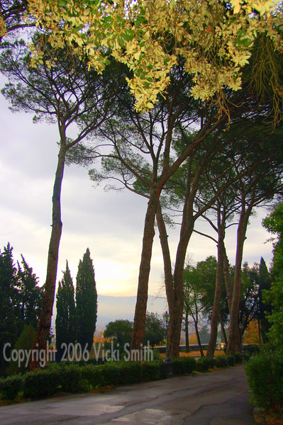One of my favorite shots.  It's what you see on the backside of the church but to me it just looks like Tuscany because the trees are very typical of what you see in that region.