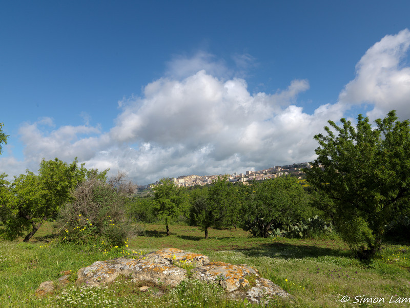 Agrigento_2013 04_4496390