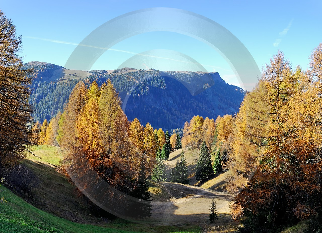 Seiser Alm Alpe Di Siusi Stock Pictures Fine Art Pictures View Point Sunshine Tree - 000468 - 27-10-2006 - 5292x3824 Pixel