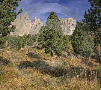 Passo Gardena Groedner Joch Pass Autumn Tree Dolomites Fine Art Landscape Photography Shore Sea - 025482 - 16-10-2018 - 8406x7478 Pixel
