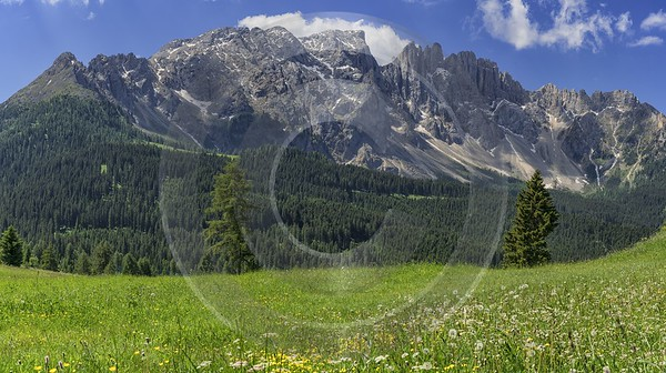 Passo Costalungo Karerpass Summer Tree Color Dolomites Panorama Park River City Stock Pictures - 024837 - 16-06-2018 - 13630x7628 Pixel