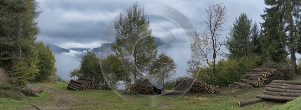 Laion Lajon Forest Fog Autumn Tree Dolomites Panoramic Fine Art Pictures Fine Art Landscape - 024241 - 19-10-2016 - 14538x5336 Pixel