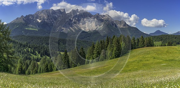Passo Nigra Nigerpass Summer Tree Color Dolomites Panorama Spring Forest Art Photography For Sale - 024859 - 16-06-2018 - 15617x7634 Pixel