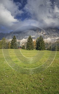 Passo Nigra Nigerpass Autumn Tree Color Dolomites Panorama Fine Art Fotografie Fine Art Photo - 025440 - 13-10-2018 - 7770x12419 Pixel