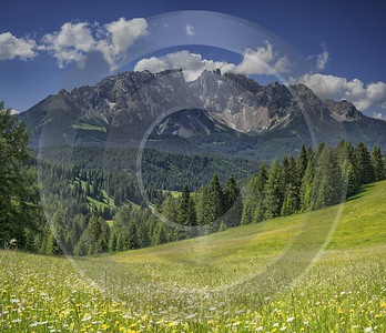 Passo Nigra Nigerpass Summer Tree Color Dolomites Panorama Sale Spring Nature Prints For Sale - 024861 - 16-06-2018 - 13002x11200 Pixel